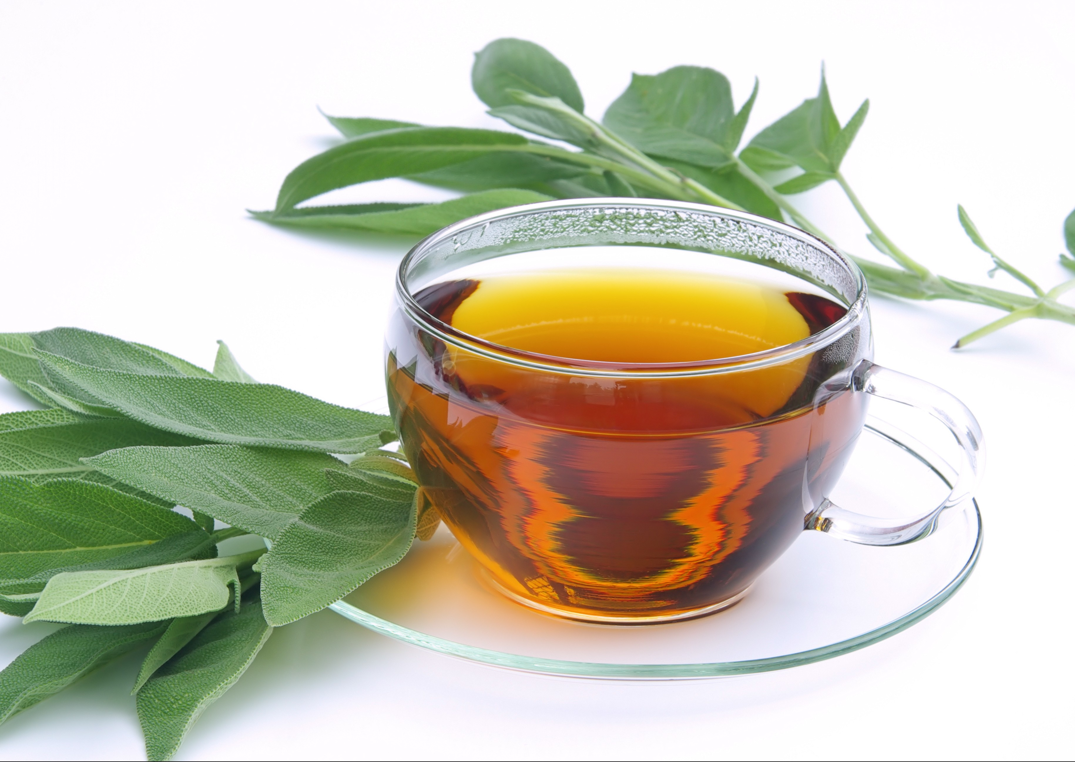 Countless Health Benefits can be Found in Green Tea